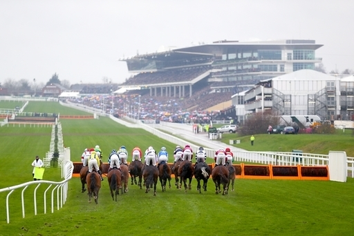 Cheltenham supreme novices hurdle betting odds hits on the street bet