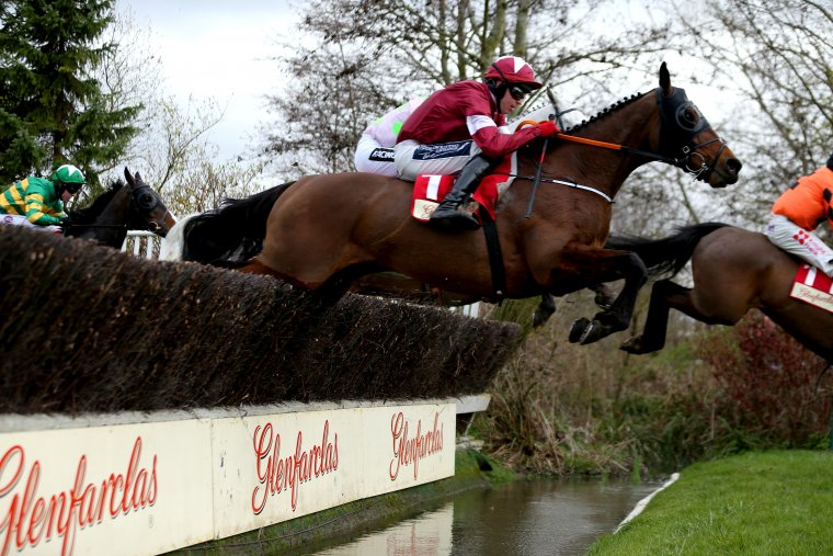 Tiger Roll Cross Country