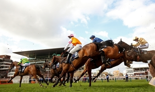 The runners and riders in last year's Marsh Novices' Chase.