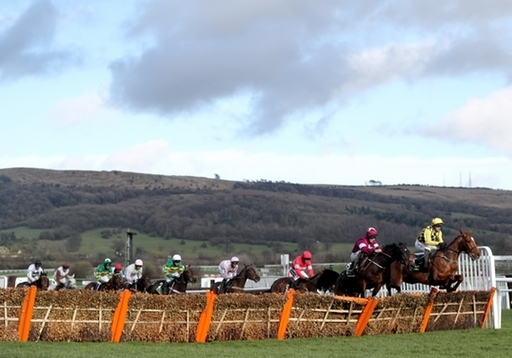 Runners and riders jump at Cheltenham