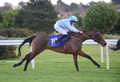 Honeysuckle gets up to win the Irish Champion Hurdle.
