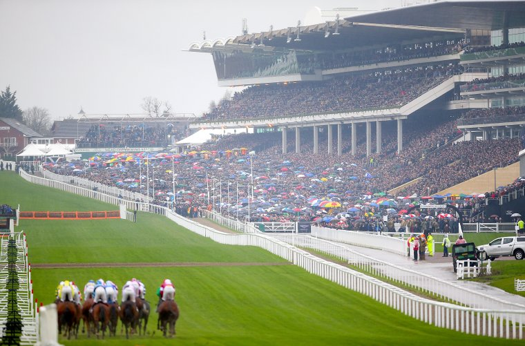 A wonderful view of the stands as runners perform in front of a packed crowd
