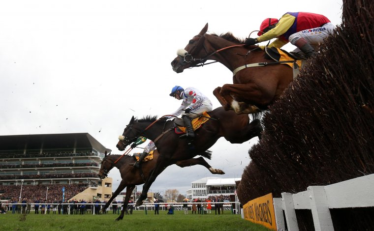 Cheltenham Festival day four tips main image
